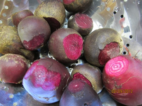 beets from Lyndele